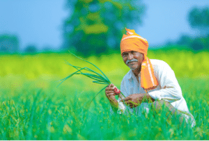 The Improved Face Of Indian Farmers